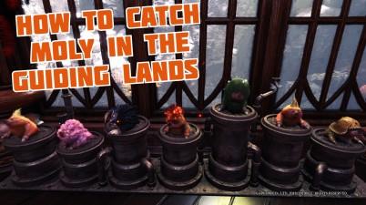 Moly guiding Lands